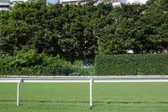 След гонки лошади Стоковые Изображения