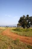 след грязи стоковое фото rf