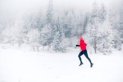 След девушки бежать на снеге в горах зимы, Польше Стоковая Фотография RF
