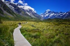 След долины рыболовного судна, кашевар держателя, Новая Зеландия стоковое изображение rf
