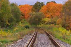 След железной дороги или трамвайной линии в красивом тумане парка осени сыроватость, яркие теплые цвета осени Стоковая Фотография RF
