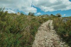 След идя через скалистую местность на гористых местностях стоковая фотография rf