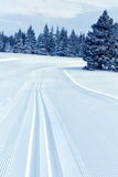 след катания на лыжах страны перекрестный Стоковые Изображения RF
