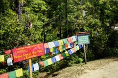 След к гнезду Бутану тигров Стоковые Фото