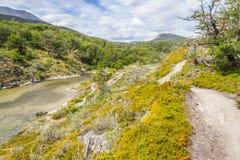 След, лес и река Lapataia, национальный парк Огненной Земли Стоковые Изображения RF