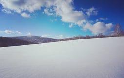 След лыжи в русском taiga стоковые фотографии rf