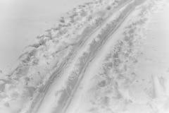 След лыжи зима времени снежка следов ноги зима валов снежка неба лож заморозка мрачного дня ветвей сини Стоковая Фотография