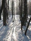след лыжи Стоковые Фотографии RF
