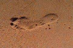 След ноги в песке стоковые изображения