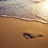 След ноги в песке стоковое изображение rf