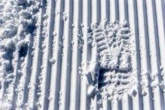 След ноги в снежке Стоковое фото RF