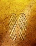 След ноги на желтой предпосылке стоковое изображение rf
