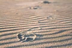 след ноги песочный Стоковое Фото