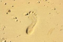 след ноги пляжа песочный Стоковое Изображение