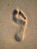 след ноги Стоковое Изображение