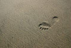 след ноги Стоковое Фото