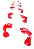 след ноги Стоковая Фотография