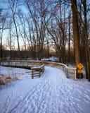 След парка в зиме Стоковое фото RF