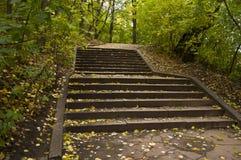след парка осени Стоковая Фотография RF