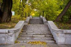 след парка осени Стоковое Изображение RF