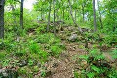След парка штата ряда Mount Holyoke Стоковые Фотографии RF