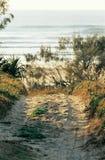 след пляжа Стоковые Изображения RF