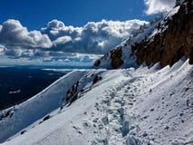 След покрытый снегом в национальном парке Йеллоустона стоковое фото