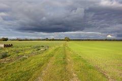 След полесья и фермы осени стоковые изображения