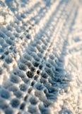 след снежка Стоковая Фотография RF
