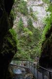 След через каньоны стоковое фото rf
