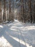 след 12 лыж Стоковые Фотографии RF