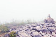 Le Piou trail Стоковые Изображения RF