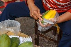 Слезающ и делящ зрелое желтое манго стоковые фотографии rf
