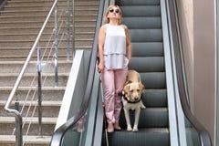 Слепая женщина с собака-поводырем Стоковое фото RF