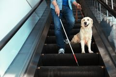 Слепой человек с длинными тросточкой и собака-поводырем на эскалаторе стоковое изображение