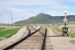 Сливать след и переключатель поезда в злаковиках стоковые изображения rf