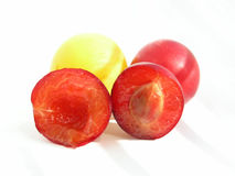 слива вишни Стоковая Фотография