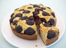слива торта contry стоковые изображения rf