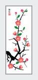 слива цветения Стоковое Изображение RF