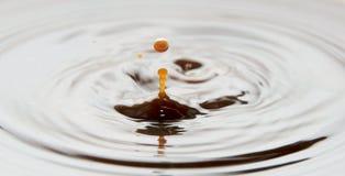 сливк кофе Стоковое Изображение