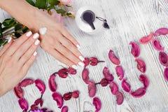 Сливк рук красоты женская для цветков рук Стоковые Изображения RF
