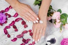 Сливк рук красоты женская для цветков рук Стоковое Фото