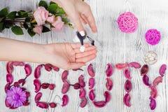 Сливк рук красоты женская для цветков рук Стоковое Изображение