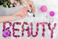 Сливк рук красоты женская для цветков рук Стоковые Фотографии RF
