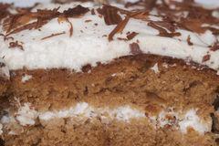сливк шоколада торта Стоковые Изображения RF