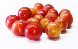 сливы вишни Стоковое фото RF