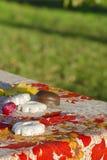 Сливы и печенья на таблице в саде напольно стоковые изображения rf