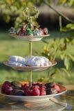 Сливы, печенья и помадки на стойке в саде напольно стоковое фото rf