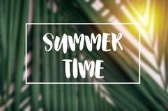 Слово рамок времени лета с лист ладони и солнечным светом тропическая задняя часть Стоковая Фотография RF