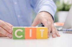 Слово CIT с красочными блоками стоковое изображение